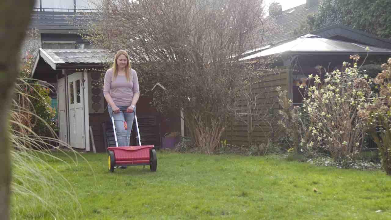 Ratgeber-Video: Tipps für den perfekten Rasen!
